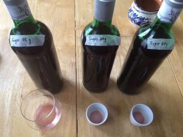 シュトゥルム(半発酵ワイン)作ってみた